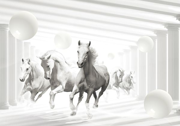 Bild von Abstrakte Pferde