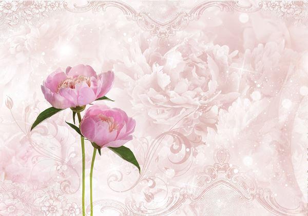 Obrazek Różowa piwonia