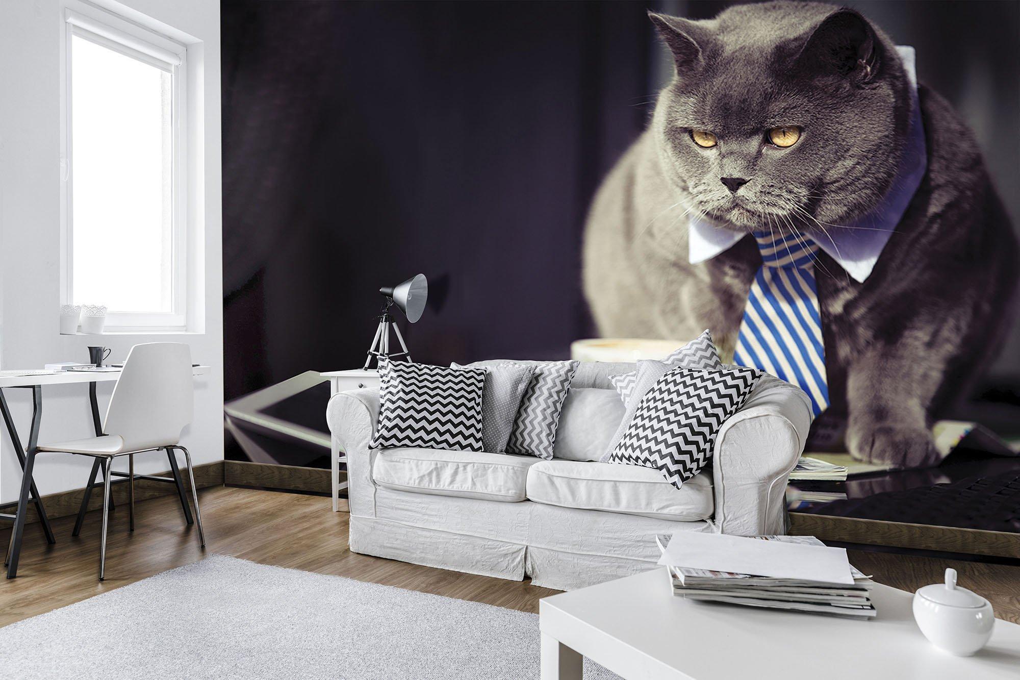 fototapete businessman katze weltderbilder. Black Bedroom Furniture Sets. Home Design Ideas