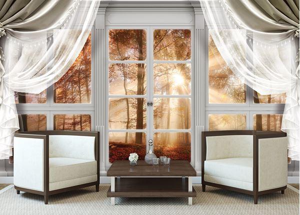 Obrazek Widok z okna na las