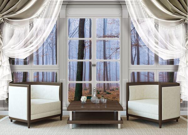 Obrazek Widok z okna na mglisty las