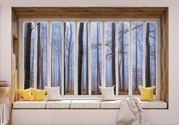 Obrazek Widok z okna na las we mgle