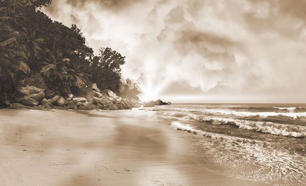 Picture of Beach Sepia