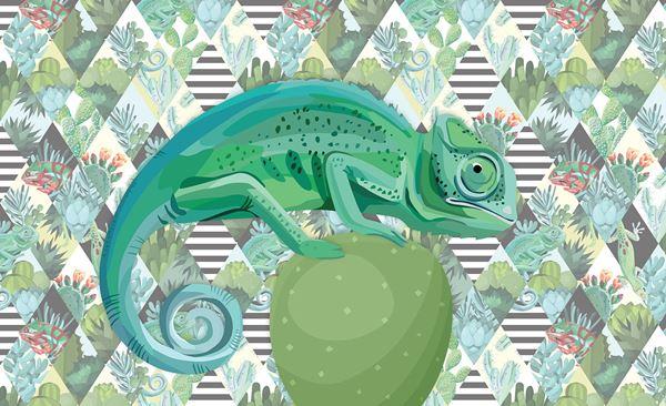 Obrazek Kameleon