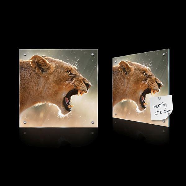 Obrazek Groźna lwica