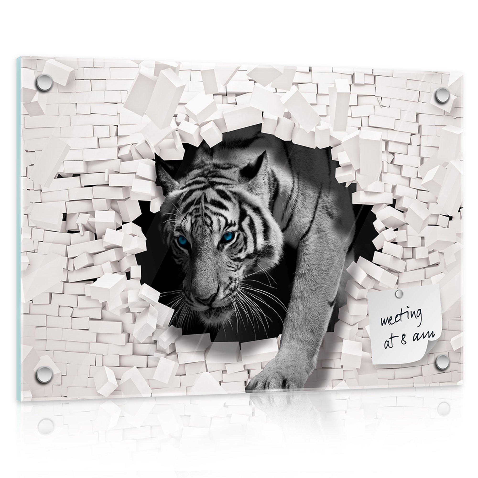 glas magnettafel tiger kommt aus der wand. Black Bedroom Furniture Sets. Home Design Ideas